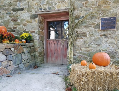 Celebrate the Harvest Season at The Mill